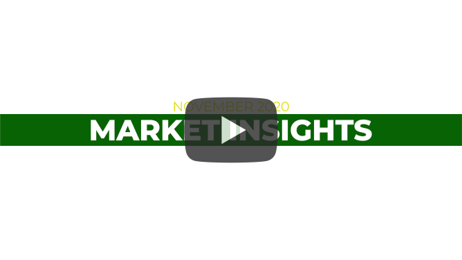 November 2020 Market Insights